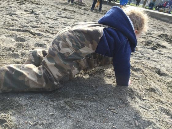 Bear loves dirt